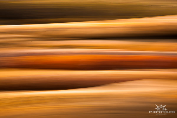 Photo Tours Vancouver abstract in orange by Aura McKay