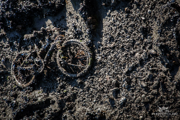 Photo Tours Vancouver old bicycle in the tidal debris of False Creek by Aura McKay