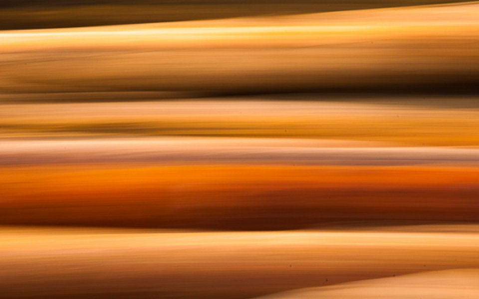 Photo Tours Vancouver - abstract in orange by Aura McKay