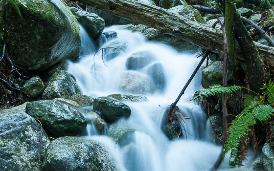 Photo Tours Vancouver - long exposure waterfall in forest by Aura McKay