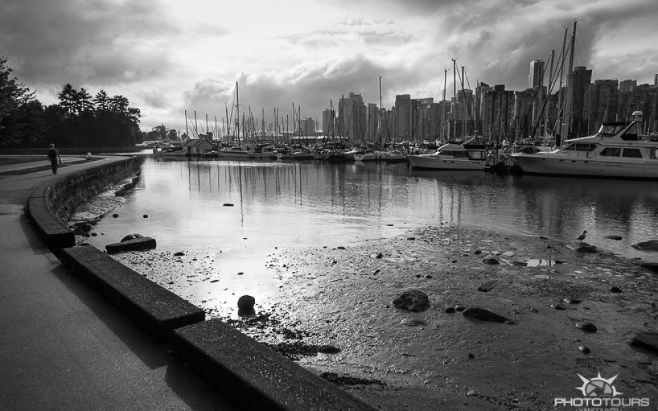 Photo Tours Vancouver Stanley Park by Aura McKay
