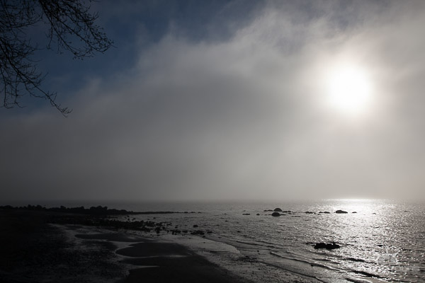 Photo tours vancouver english bay in the fog by Aura McKay
