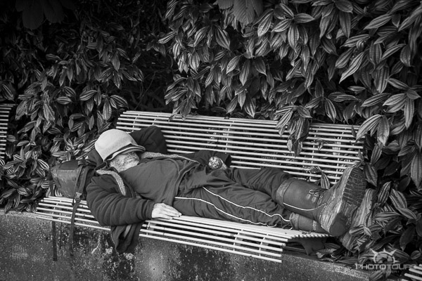 Photo Tour Vancouver black & white of man on a bench at the sea wall by Aura McKay